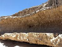 Wybierz interesujące Cię atrakcje turystyczne na Fuerteventura