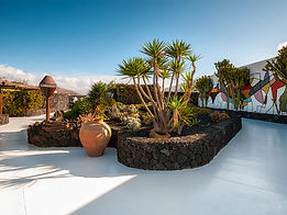 Mikstura Lanzarote