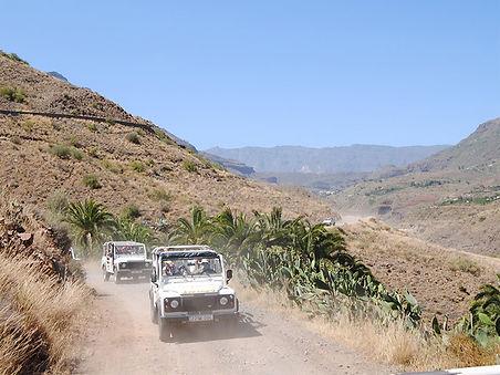 Jeep Safari i Wielblady PL