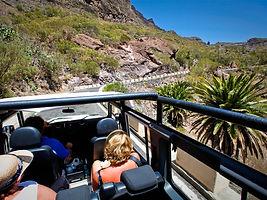 Jeep Safari Teide-Masca