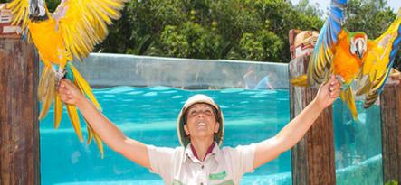 Teneryfa 2 Ticket Jungle Park i Aqualand