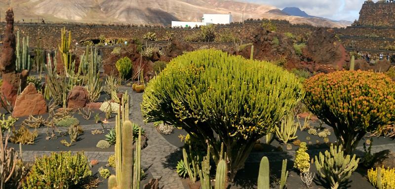 Lanzarote 4 atrakcje w cenie 3