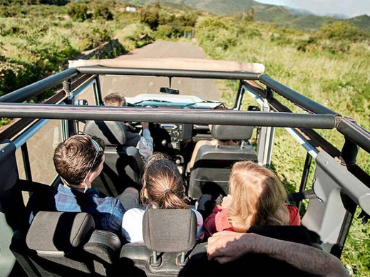 EL Hierro Jeep z Teneryfy