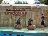 Aquaparki, park zoologiczny i inne tematyczne atrakcje!