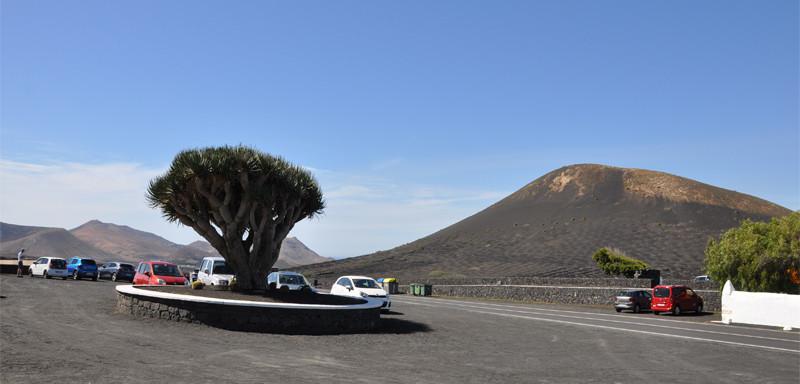 Lanzarote moja własna wycieczka Bodega Rubicon