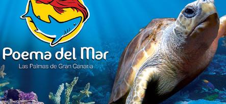 Gran Canaria Poema del Mar Aquarium