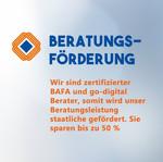 Beratungsfoerderung-UMSATZSCHMIEDE-Marke