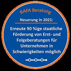 BAFA Beratungsfoerderung staatliche Foer