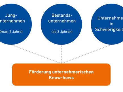 Anleitung zur Antragsstellung für BAFA Beratungsförderung / Beratung zum Krisenmanagement