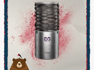 What microphone is best for recording voiceover for video?