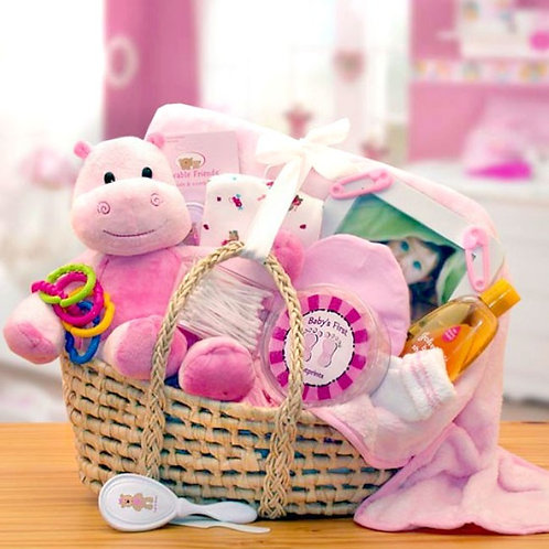 New Baby Girl, Moses Gift Basket For Girl Babies