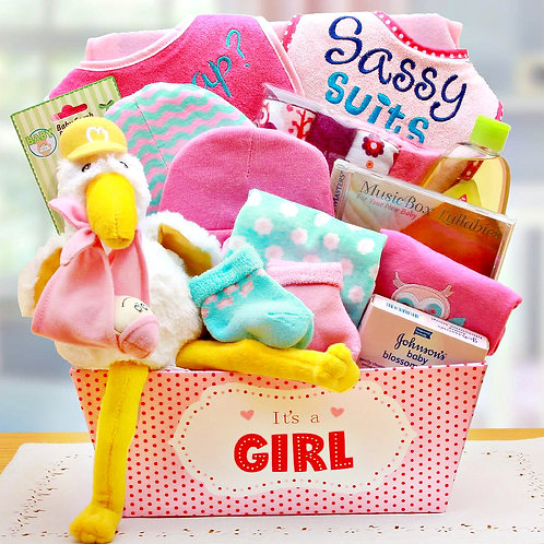 Special Delivery, Baby Girl Gift Basket