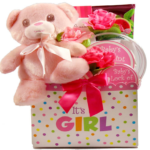 Baby Girl Gift Basket, Cuddly, Cute  Newborn Baby Girl Gift