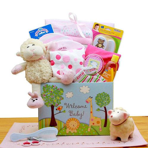 New Baby Gift Box - Pink