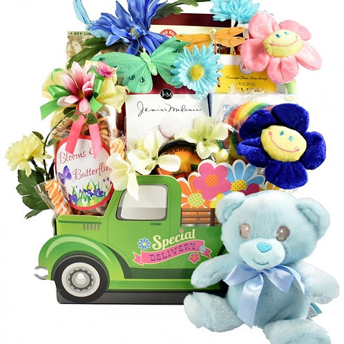 Celebration On Your New Baby Gift Basket