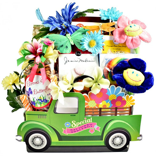 Gifts And Goodies, Special Delivery Gift Basket For Her
