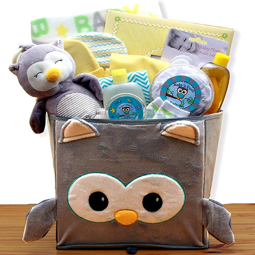 "Adorable ""Little Hoot"" Baby Gift Basket, Perfect New Baby Gift"