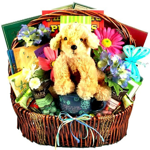 Gift Basket To Encourage and Lift Your Spirits