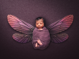 Newborn Photography - Purple Faery