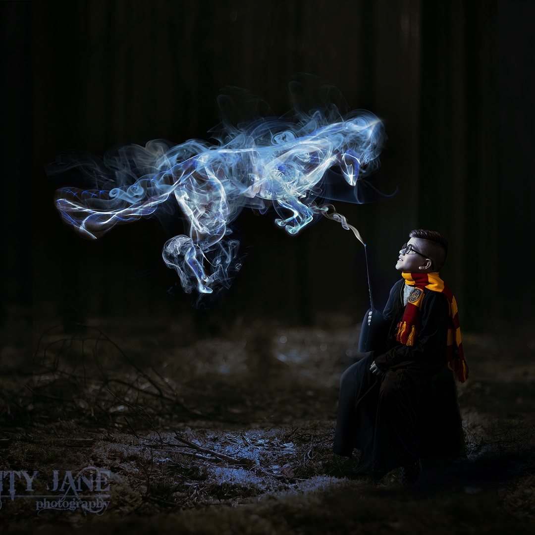 Harry Potter Fantasy Portrait