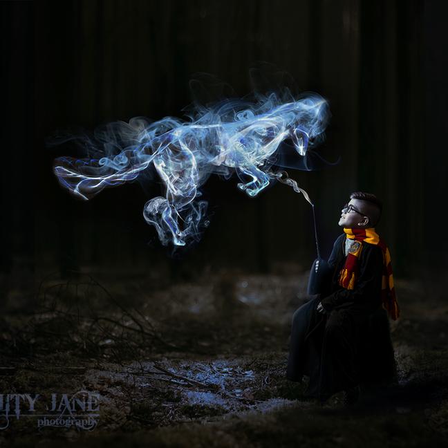 Harry Potter Fantasy Portrait