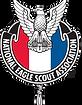 Eagle Scout NESA Logo