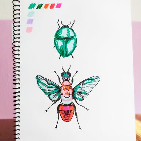 outros insetos