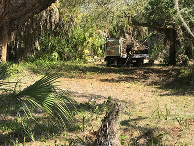 building lot brush removal,building lot yard waste removal,