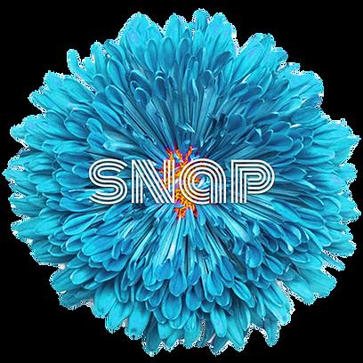 Snap Blue Flower.png