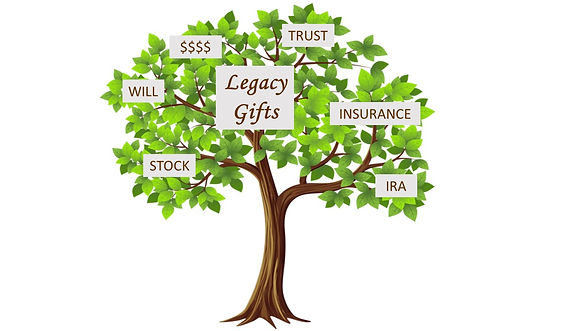 Legacy Tree.jpg