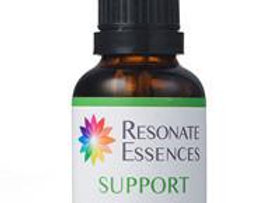 Support Essence