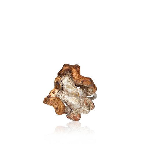 Ring Rocks