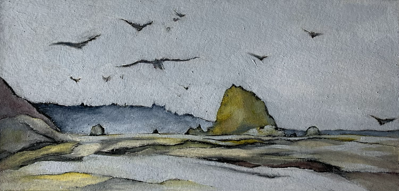 Gulls at Hug Point