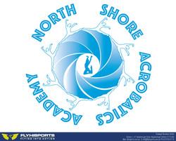 NS Wave Logo