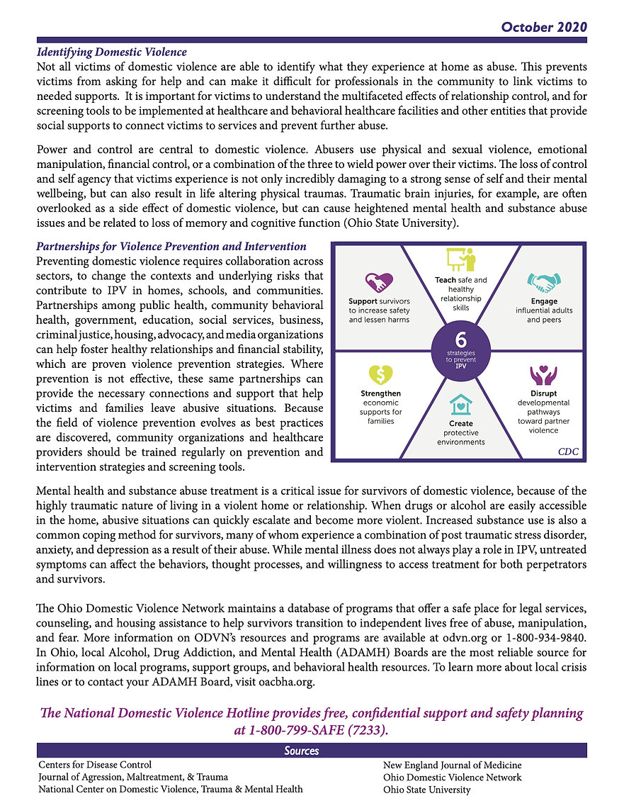 October 2020 Domestic Violence two Pager