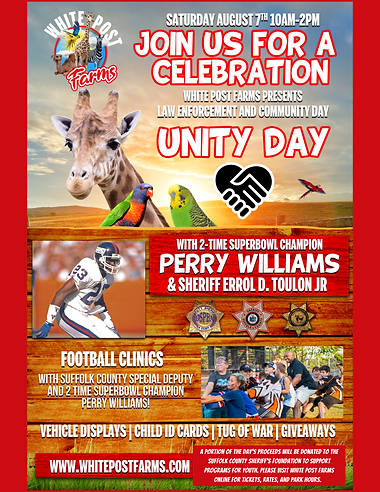 Poster of Unity Day (1).png