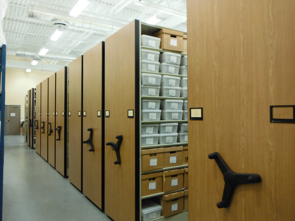 nsas-02-archeaology-lab-collection.jpg