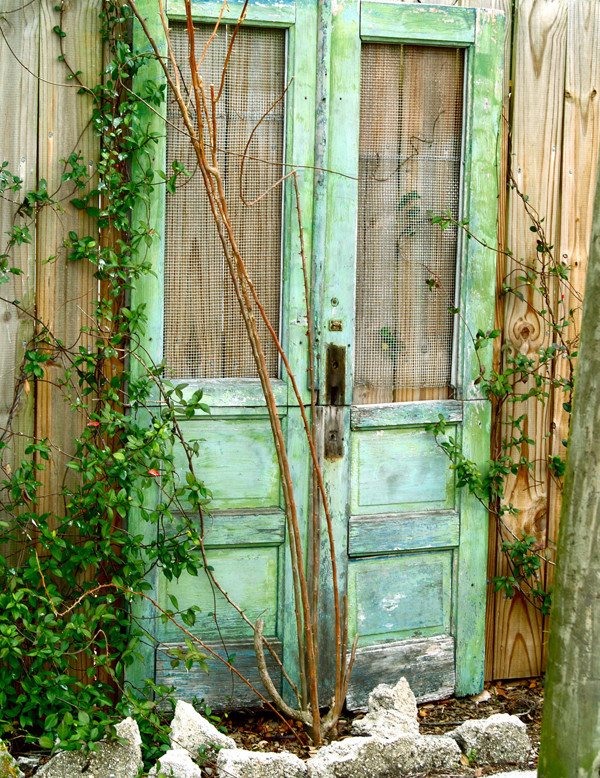 Ideas for Old Vintage Unused Wood Doors with screen against fence yard decoration ideas with vines