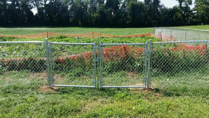 Galvanized Garden Fence