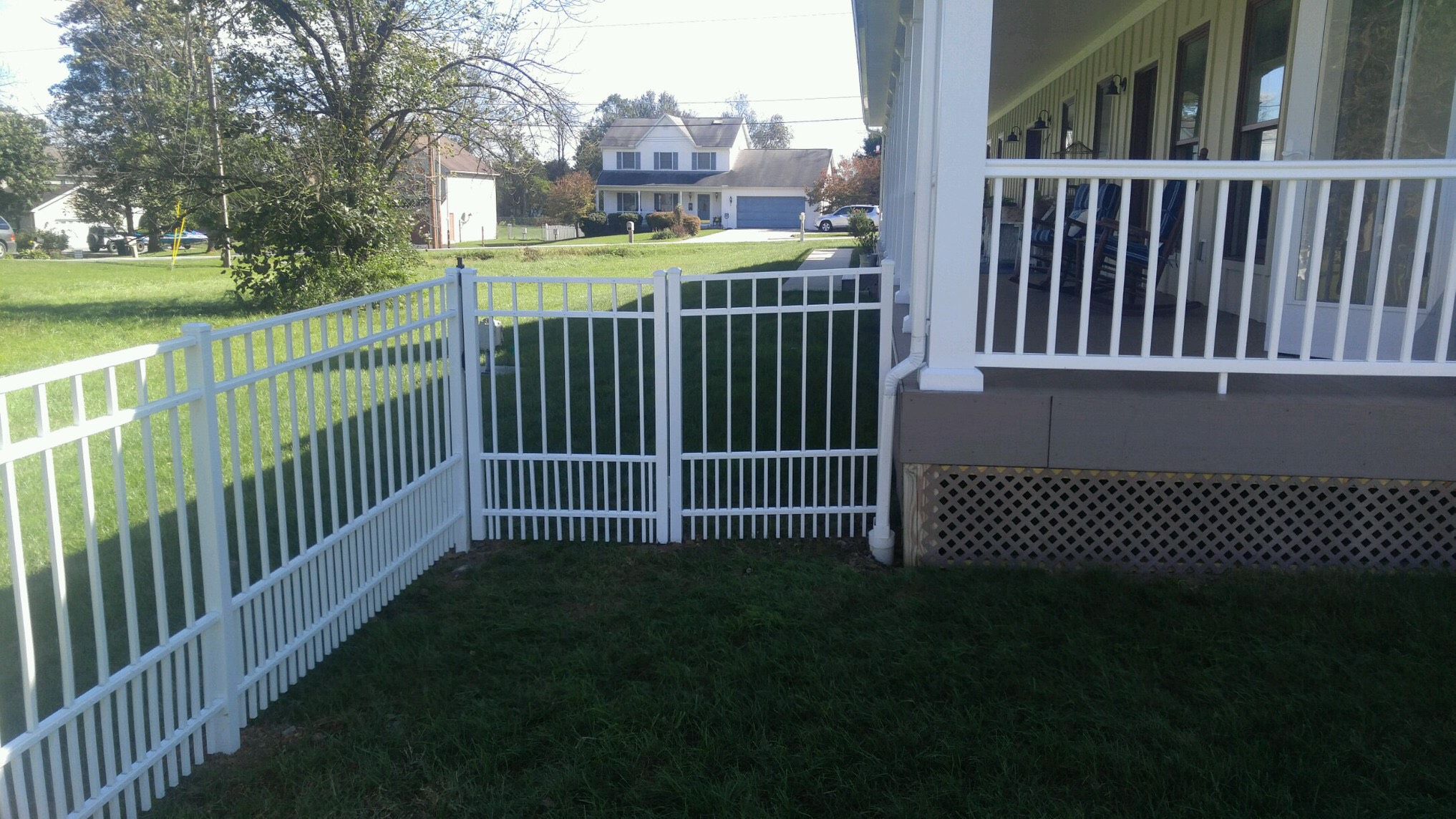 Puppy Picket Fences