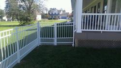 Puppy Picket Fences
