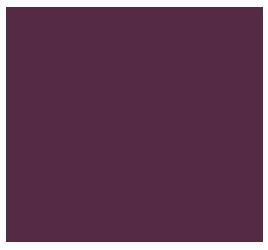 expert_badge_original_web.png