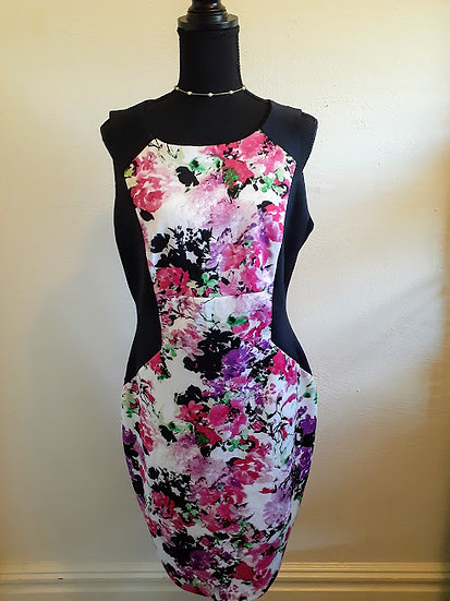 Roxberi Studios Bodycon Dress