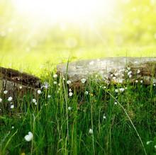 Serenity through Faith