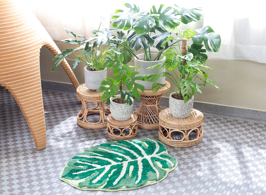 FrecklePot Main Image 03.jpg