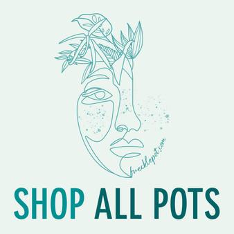 ShopAllPots.jpg