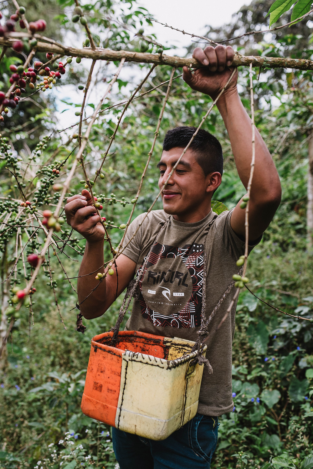 """Nolberto, age 21. Coffee farmer from San Ignacio, Peru. He was forced to assume the role as head-of-household when his father passed away when he was 15. When asked to describe how he'll improve his coffee production, he stated, """"By being innovative."""""""