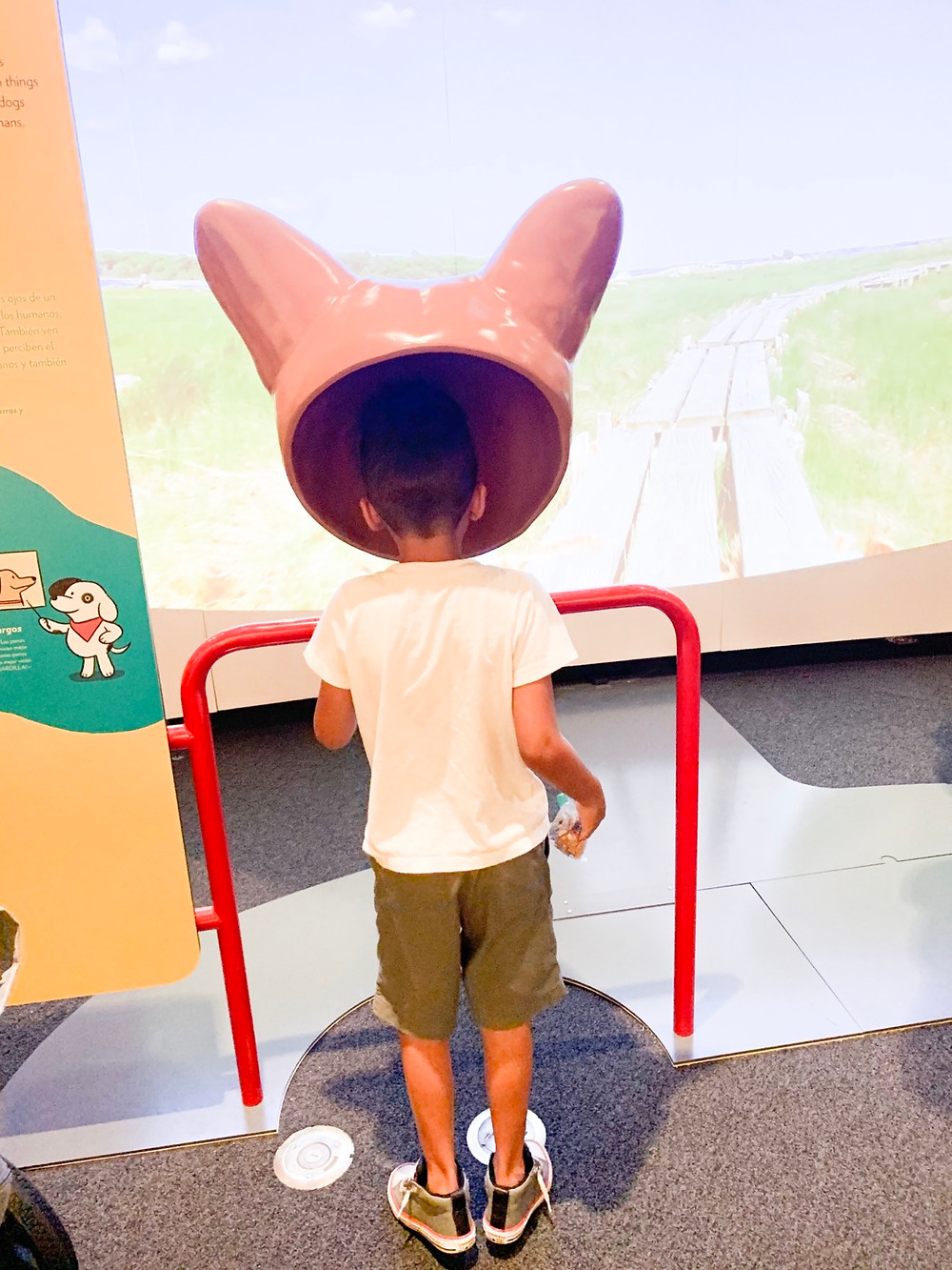 Dogs! A Science Tail | California Science Center | Sweet P and Sky
