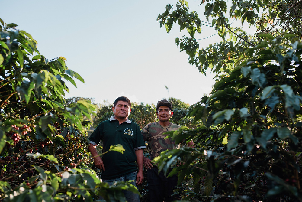 Daniel Diaz (left) and his father, Gonzalo Diaz (right), two of FFCC's first partner- farmers.