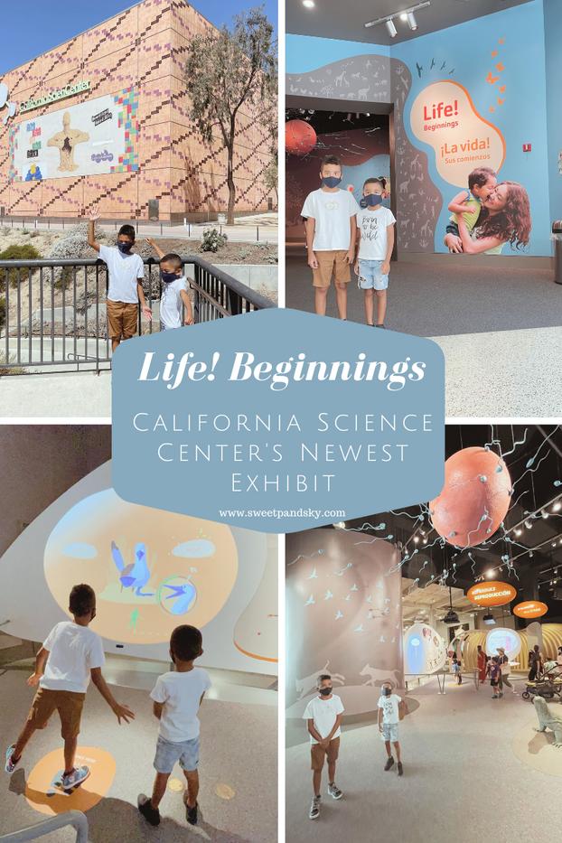 Life! Beginnings | California Science Center's New Exhibit